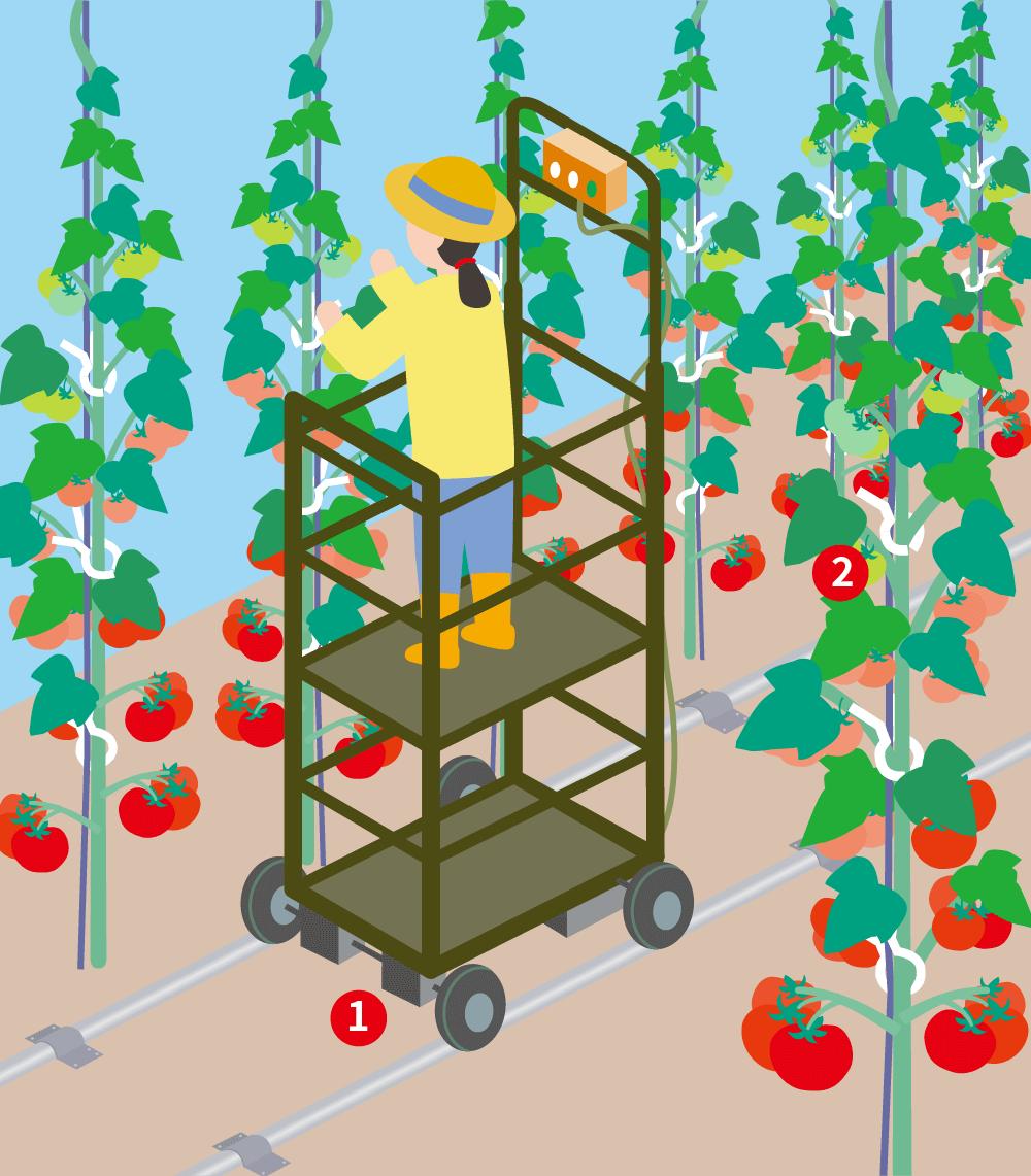農地のイラスト
